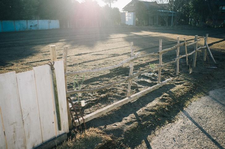 木の枝で作る柵