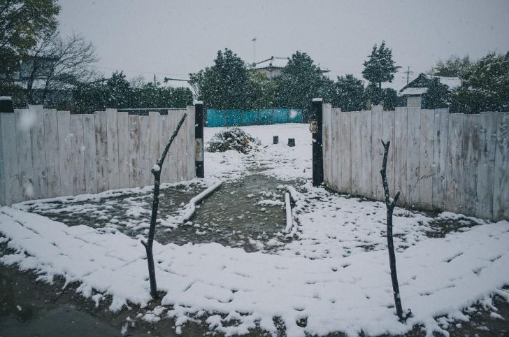 ポタジェ雪景色