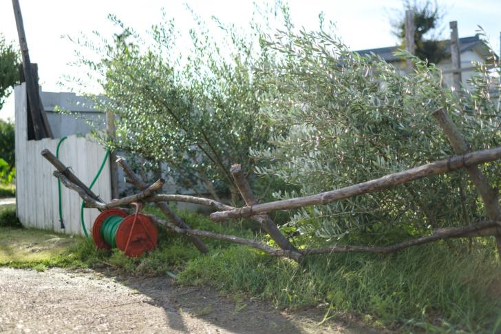 台風で壊れたものたちの修理