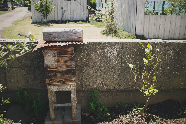 養蜂箱を設置して蜂を待つ
